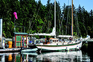Deer Harbor Marina Activities